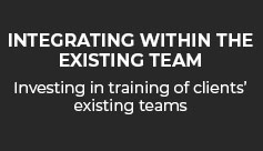 Vital Energi - Integrating within Existing Team